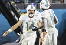 Ryan Fitzpatrick, dolphins offense