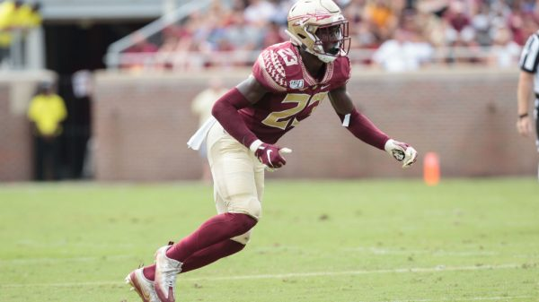 Hamsah Nasirildeen, S, Florida State - NFL Draft Player Profile