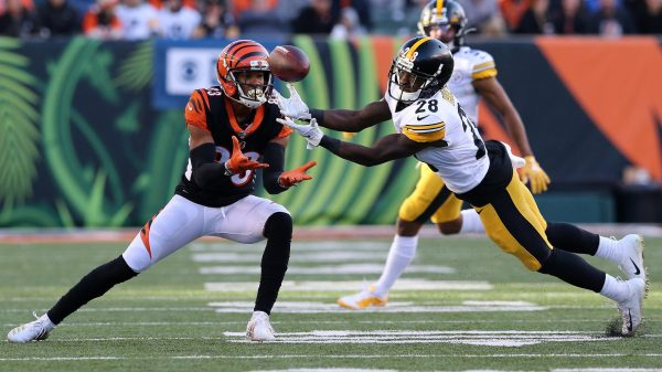 What are the Cincinnati Bengals doing in free agency?