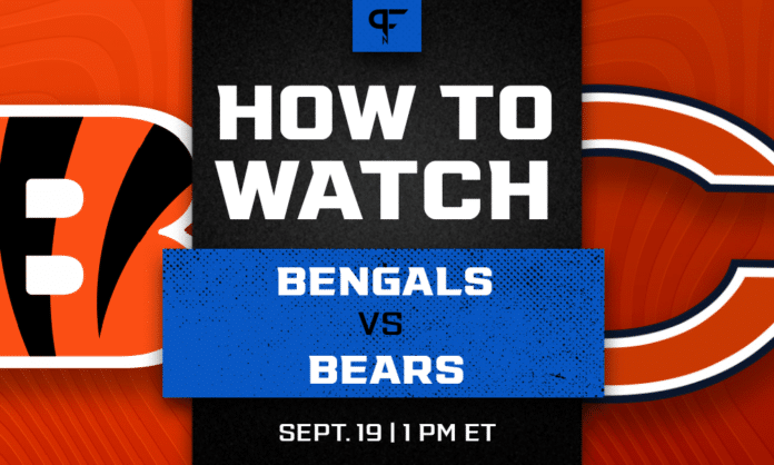 Bengals vs. Bears odds, line, prediction, and how to watch the Week 2 game